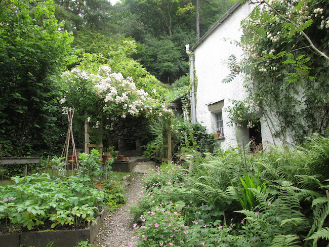 The herb garden at Dove Cottage