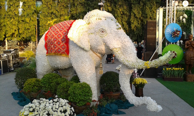 An elephant covered in flowers near the pageant stage